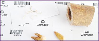 muestras_GENYCA_WEB-1024x611