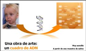 Proceso cuadro de adn GENYCA